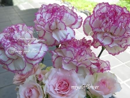 ♪お花の中では一番好きな花_b0255144_00050153.jpg