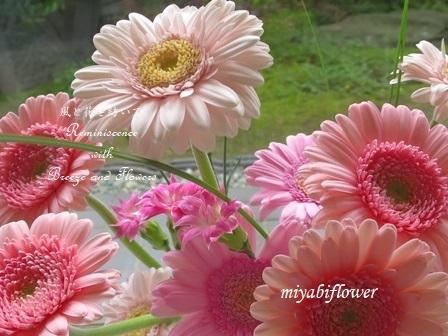 ♪お花の中では一番好きな花_b0255144_00051594.jpg