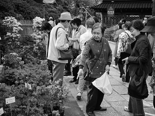 根津神社にて_c0030685_18202577.jpg
