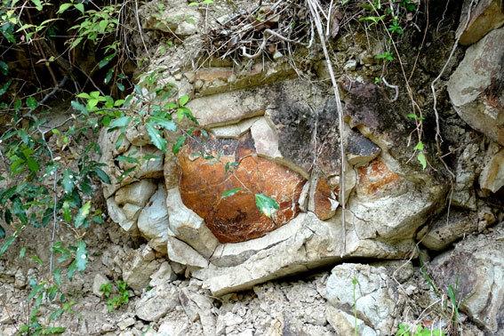 タマネギのように風化する岩_b0145296_08292318.jpg