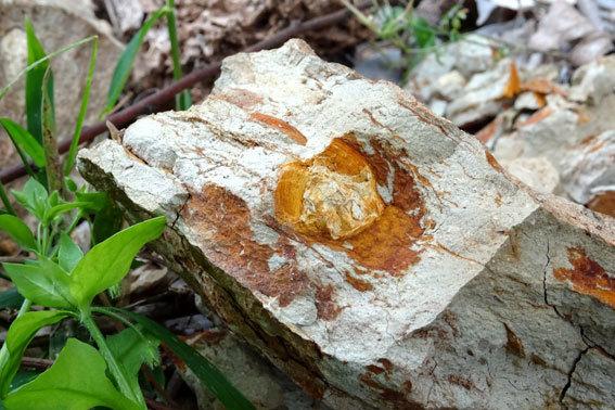 タマネギのように風化する岩_b0145296_08292743.jpg