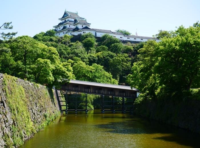 緑が美しい和歌山城公園  2021-05-11 00:00_b0093754_22525474.jpg