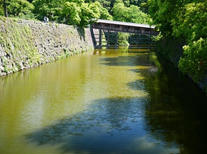 緑が美しい和歌山城公園  2021-05-11 00:00_b0093754_22530931.jpg