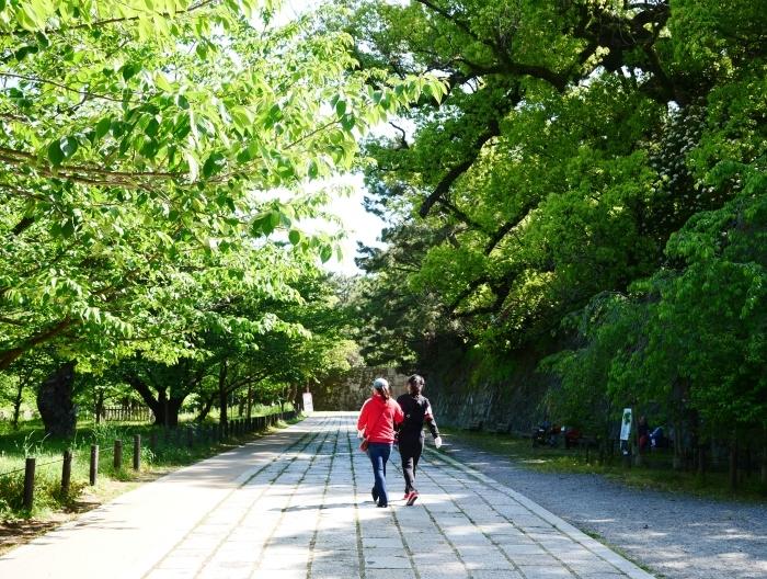 緑が美しい和歌山城公園  2021-05-11 00:00_b0093754_22531997.jpg