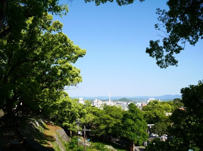 緑が美しい和歌山城公園  2021-05-11 00:00_b0093754_22545803.jpg