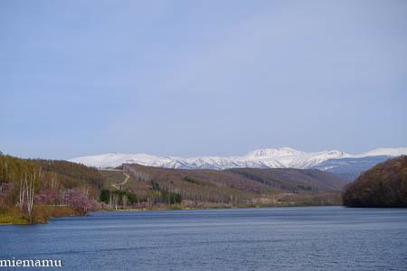 聖台ダムと桜~2021年5月_d0340565_19334237.jpg