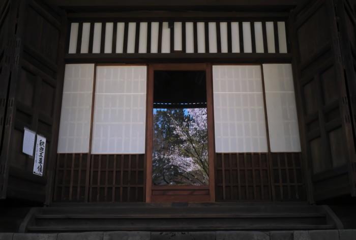 京都 桜 2021_f0021869_21200141.jpg