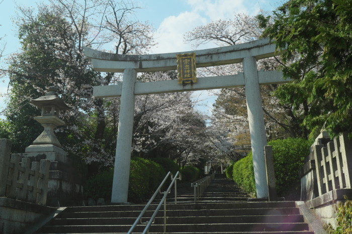 京都 桜 2021_f0021869_21200278.jpg