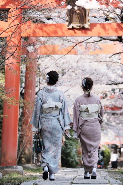 京都 桜 2021_f0021869_21462652.jpg