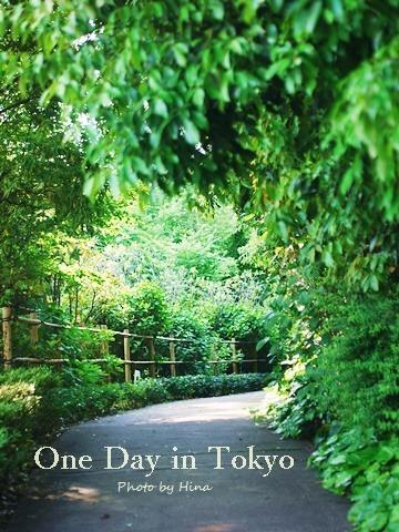 新緑したたる、One Day in Tokyo_f0245680_15592623.jpg