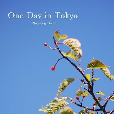 新緑したたる、One Day in Tokyo_f0245680_16023209.jpg