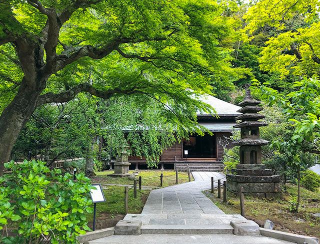 東慶寺の新緑_b0145398_22434710.jpg