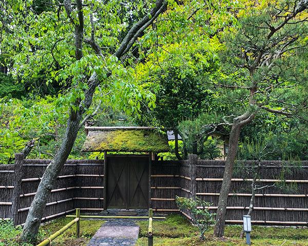 東慶寺の新緑_b0145398_22435922.jpg
