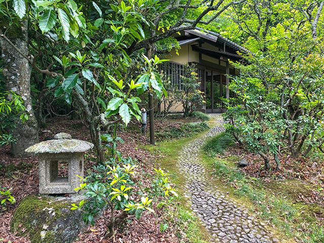 東慶寺の新緑_b0145398_22440703.jpg