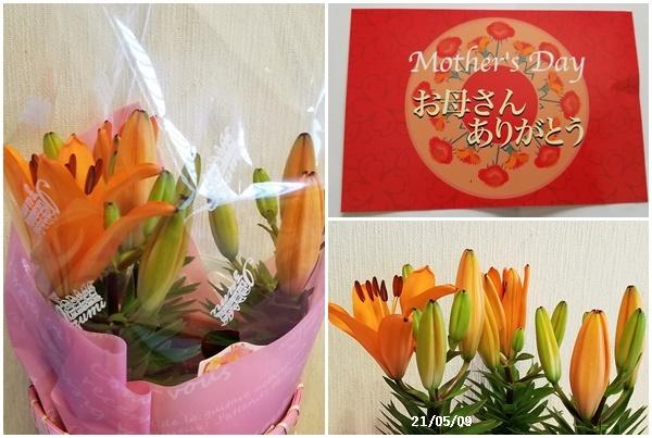母の日、庭の花、ワクチン予約、N叔母_c0051105_20395124.jpg