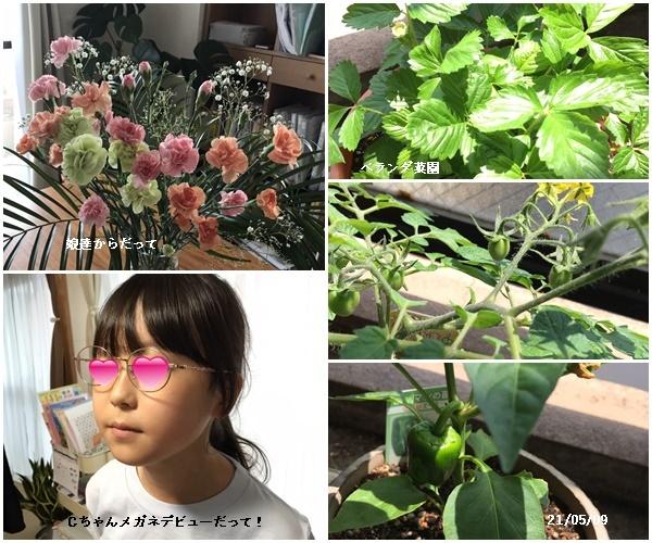 母の日、庭の花、ワクチン予約、N叔母_c0051105_20582182.jpg