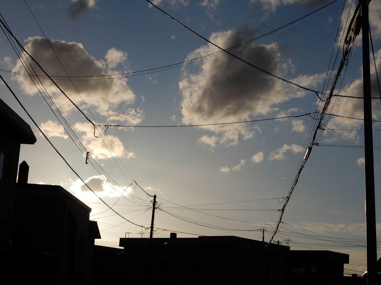 札幌も北海道も過去最多を更新_c0025115_21555698.jpg