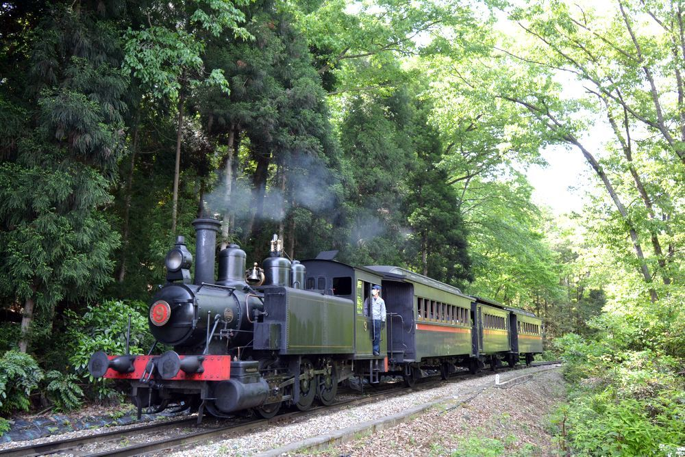 新緑と9号機関車_e0373930_19540705.jpg
