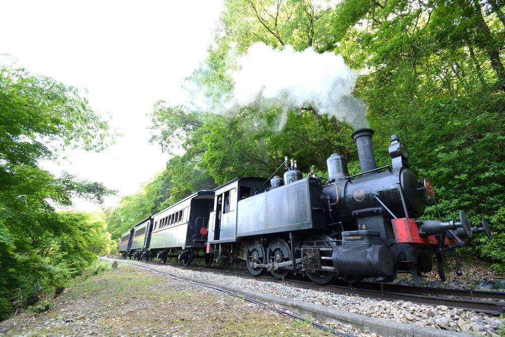 新緑と9号機関車_e0373930_19540873.jpg