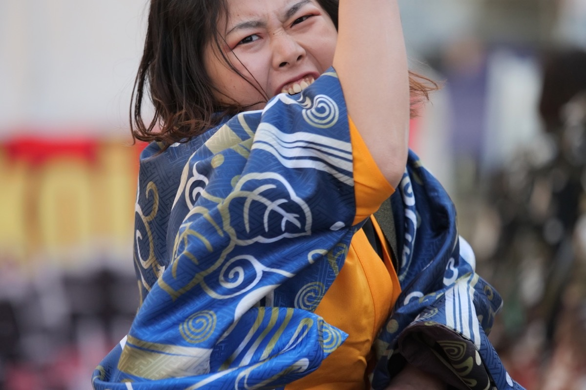 2020YOSAKOIぶち楽市民祭その26( 仁双弍心)_a0009554_22025846.jpg