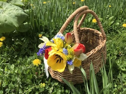 咲き始めました_f0134670_18015552.jpeg