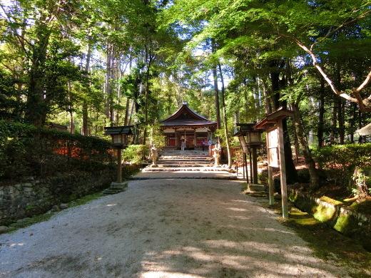 大田神社_f0226671_16055168.jpg