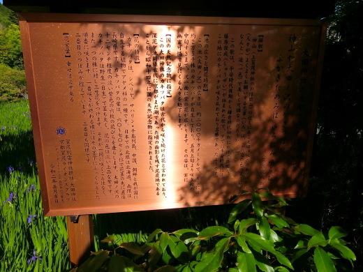 大田神社_f0226671_18284534.jpg