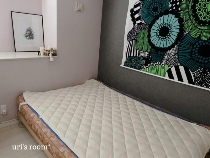 ベッドパッドを新調しました。_a0341288_23551747.jpg