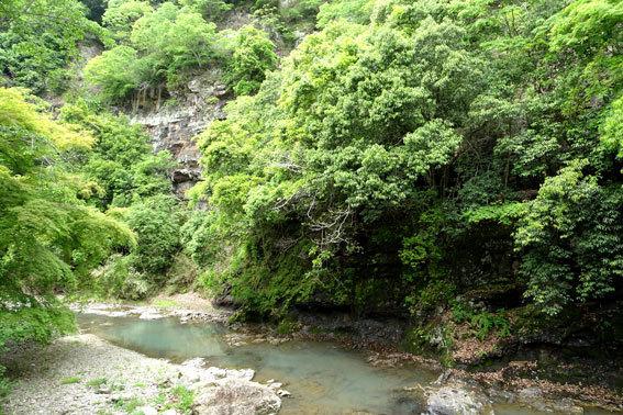 貝石山を横切る水路_b0145296_12492256.jpg