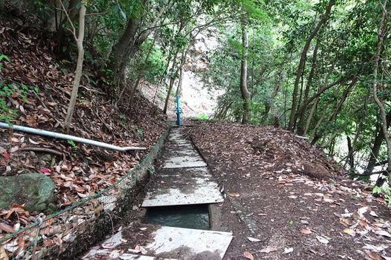 貝石山を横切る水路_b0145296_12492416.jpg