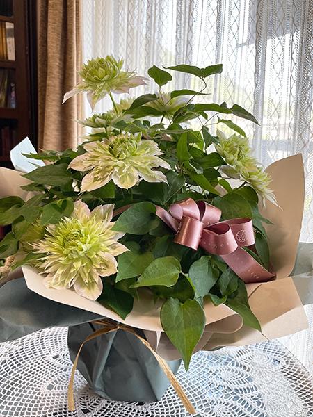 happy mother\'s day!_d0321904_15361409.jpg