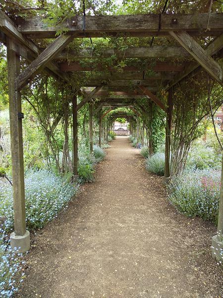 英国の庭_a0384327_21400530.jpg