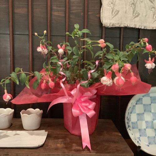 母の日のプレゼント、ありがとう_d0336460_08520590.jpeg