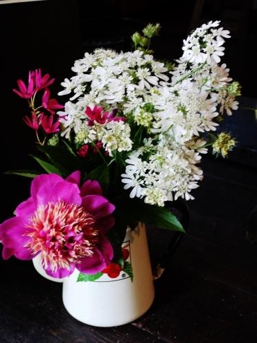 お花いっぱい♪ミロ店長頑張る☆_e0167795_14123806.jpg