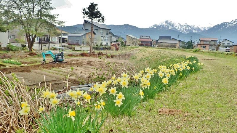 連休最後の兼業農家は最後に残っていた水田の春耕を行いました_c0336902_22084327.jpg