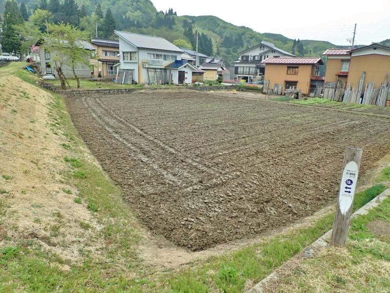 連休最後の兼業農家は最後に残っていた水田の春耕を行いました_c0336902_22085132.jpg