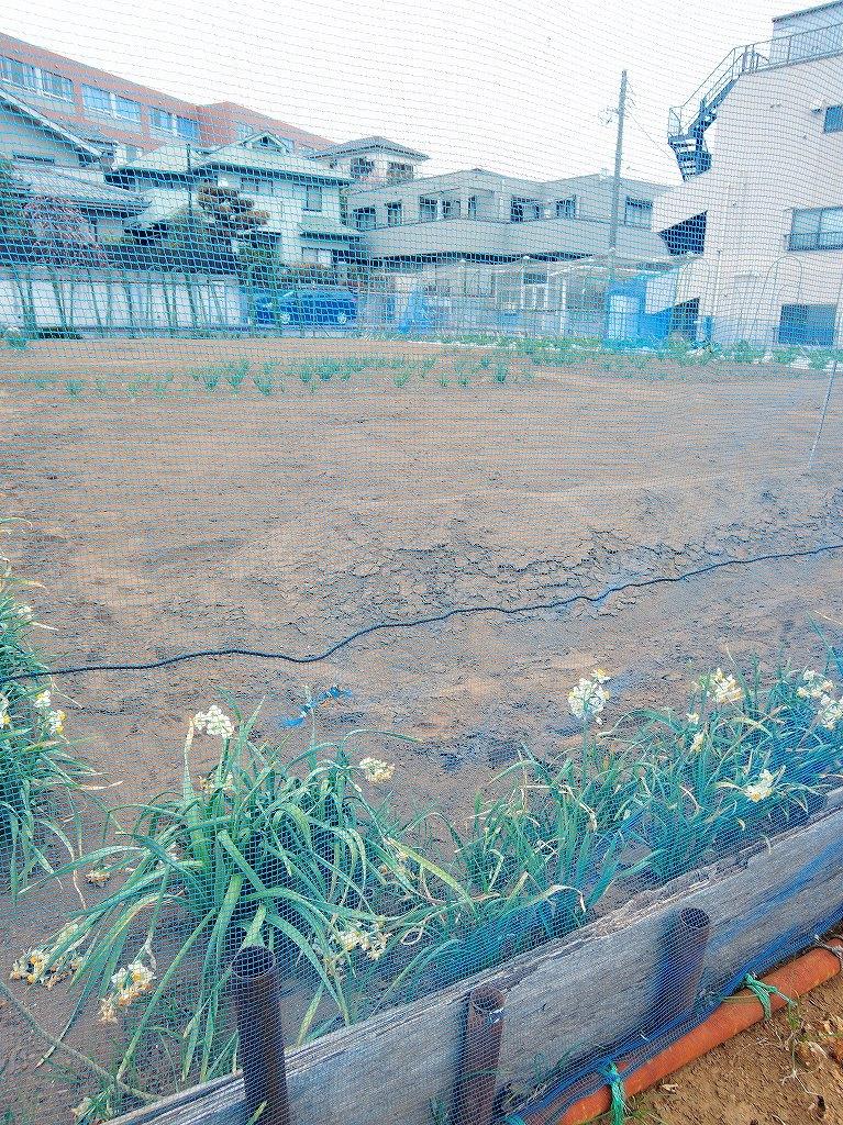 ある風景:Shirahata, Oguchi@Yokohama #1_d0393923_22571283.jpg