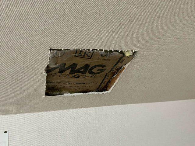雨漏り天窓修理とクロス修理_f0031037_18393583.jpg