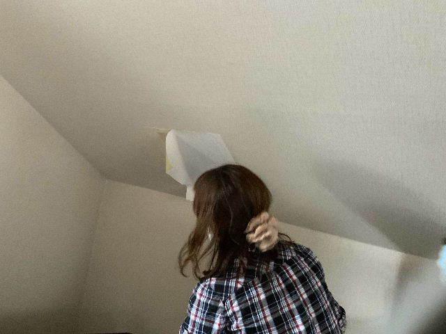 雨漏り天窓修理とクロス修理_f0031037_18421704.jpg