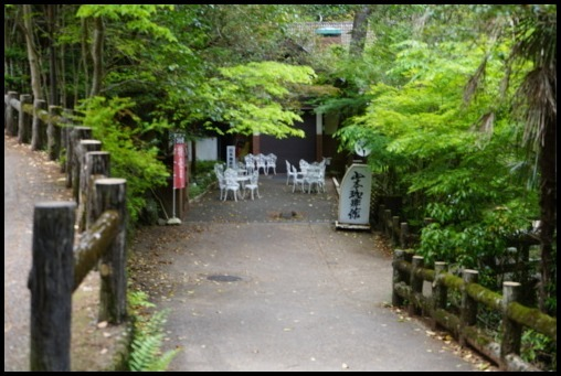ウォーキング「箕面の滝」_d0024438_20225625.jpg