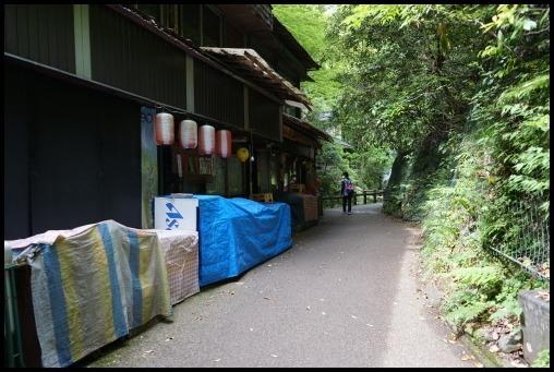 ウォーキング「箕面の滝」_d0024438_20243998.jpg