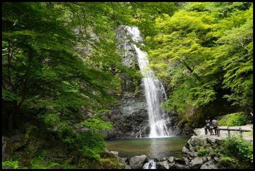 ウォーキング「箕面の滝」_d0024438_20260676.jpg