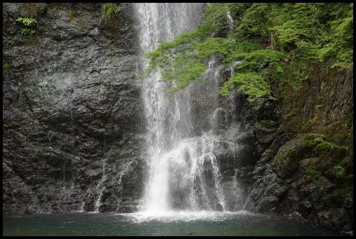 ウォーキング「箕面の滝」_d0024438_20271822.jpg