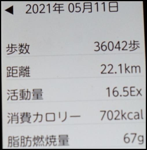 ウォーキング「箕面の滝」_d0024438_20335484.jpg