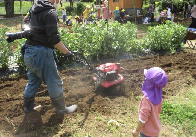 野菜作りの始まりまは…_f0334882_13182601.jpeg