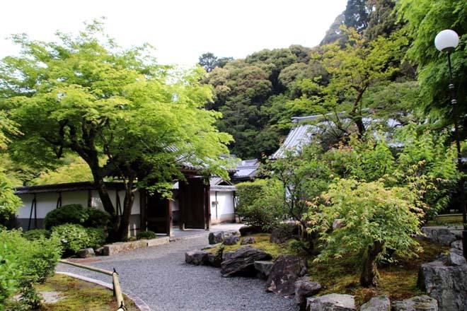 南禅寺 最勝院 青もみじ_e0048413_20563687.jpg