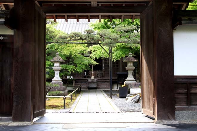 南禅寺 最勝院 青もみじ_e0048413_20565126.jpg