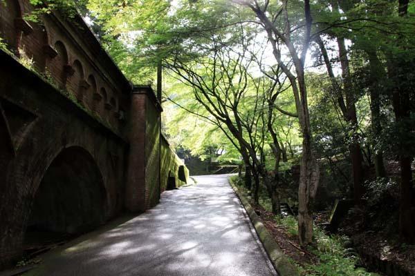 南禅寺 最勝院 青もみじ_e0048413_20570377.jpg