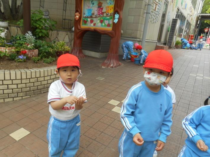 5月12日 朝の登園風景と子どもたち_a0212624_11384067.jpg