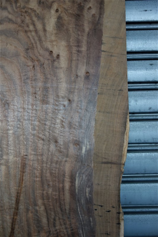 クラロウォルナット Claro walnut 一枚板 A❸_e0156341_07390740.jpg